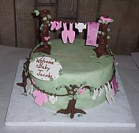 Baby Shower Cake with Clothes Line, Chocolate Trees, and Birds