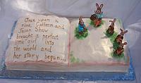 Top view of Peter Rabbit Book Cake