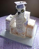 College Graduation Owl And Books Cake side view