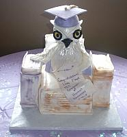 College Graduation Owl And Books Cake main view