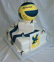 Graduation Cake with Volleyball, College Emblem, Sports Medal