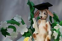 Close-up of Lop Earred Bunny decoration on Graduation Cake for Law School Grad