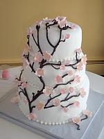 Asian Floral Wedding Cake with Gumpaste Cherry Blossoms